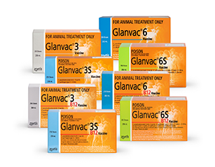 Glanvac Group Shot (8 kinds)