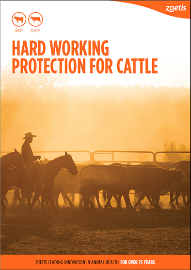 Hard_Working_Protection_for_Cattle_PDF_FrontCover