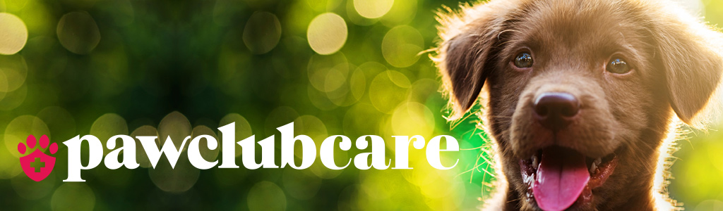 Paw Club Care Header